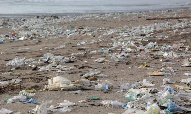 Plastik wohin du schaust