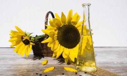 Gesunde Öle: Sonnenblumenöl ist ein Küchenklassiker