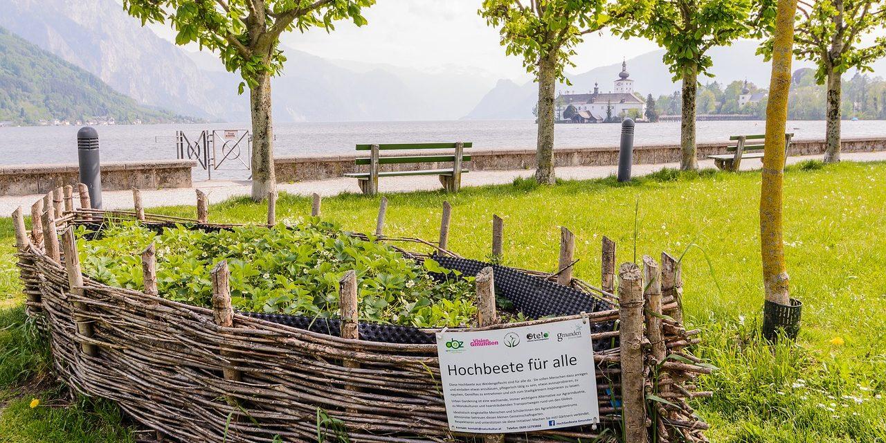Urban Gardening ist mehr als nur ein Trend!