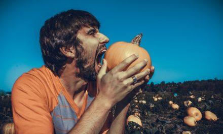 Gelesen: Weil wir Essen lieben